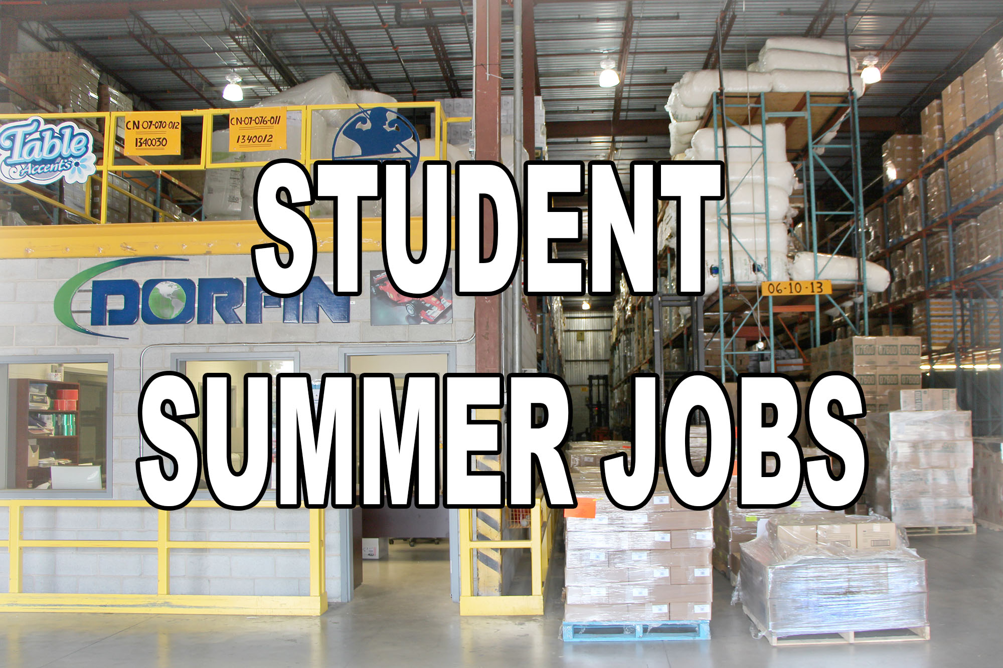 Student Summer Jobs At Dorfin